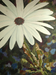 image of acrylic painting Daisy by Carron Berkes
