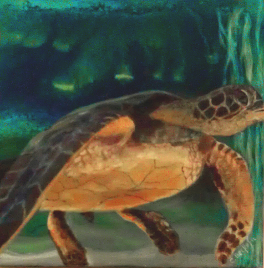 image of acrylic painting Endangered - Sea Turtle by Carron Berkes