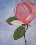 image of acrylic painting Magnolia by Carron Berkes