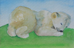 image of watercolour painting Little Bear by Carron Berkes